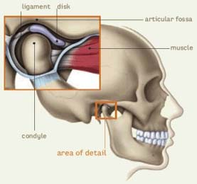 TMJ Treatment and Relif Columbus Ohio